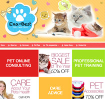 Website Theme for Pets and Animals